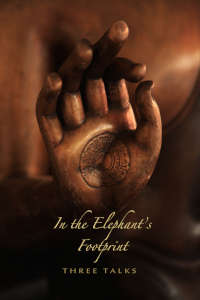In the Elephant's Footprint thumbnail