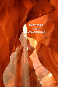 Factors for Awakening thumbnail