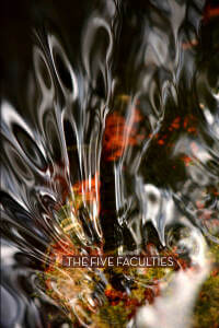 Five Faculties Retreat thumbnail