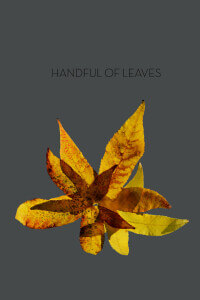 Handful of Leaves thumbnail