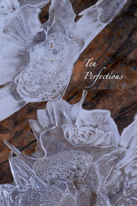 Ten Perfections thumbnail